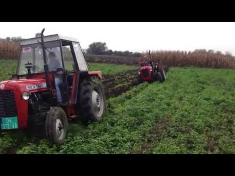 Plowing with two tractor Tafe 42 DI