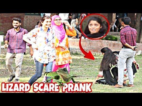 Xxx Mp4 Lizard Prank On Cute Girls Prank In Pakistan FCC 3gp Sex