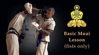 MUAI - Basic Lesson (Fists only)