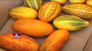 Inspirational Story About Plants Cultivation | Organic Products in Guntur  | HMTV