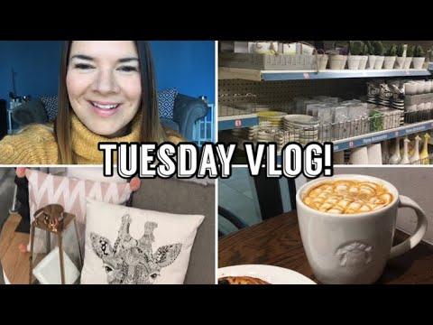 Xxx Mp4 Tuesday Vlog Charity Shops Poundland Looking For A Zebra B Q 3gp Sex