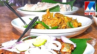 Thusharagiri sets a splendid treat for tourists | Manorama News