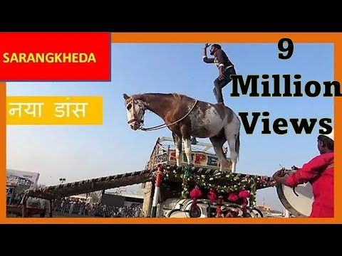 Xxx Mp4 पहली बार घोड़े का पिकअप डांस ढोल नाच India S Got Talent Amazing Horse Dancing On Pick Up Van 3gp Sex
