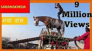 पहली बार घोड़े का पिकअप डांस ढोल नाच : India