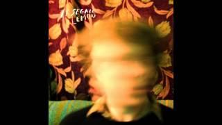 Ty Segall - Lemons (Full Album)