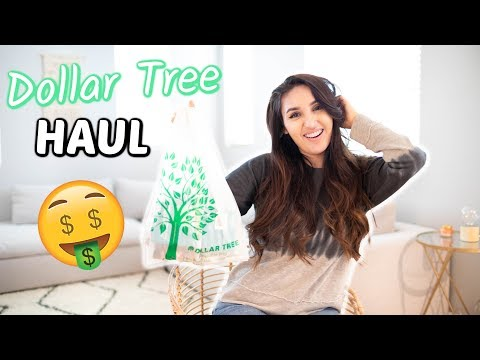 Xxx Mp4 HUGE DOLLAR TREE HAUL 2019 Best Things To Get At The DOLLAR TREE 3gp Sex