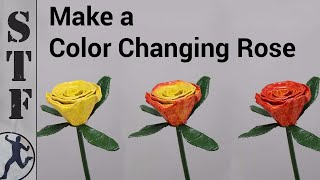 The Color Changing Rose | Magic Trick