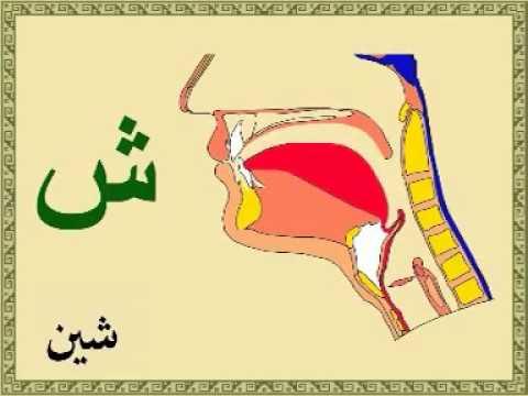Learn Quran with rules of tajweed, pronunciation free