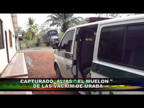 CAPTURADO ALIAS EL MUELON DE LAS VACRIM DE URABA.mpg