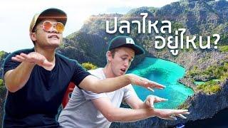 ไปหาปลาไหลที่เกาะหัวใจ  - Bie The Ska Feat.Net iDol (Parody That's What I Like - Bruno Mars)