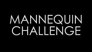 Mannequin Challenge II LO