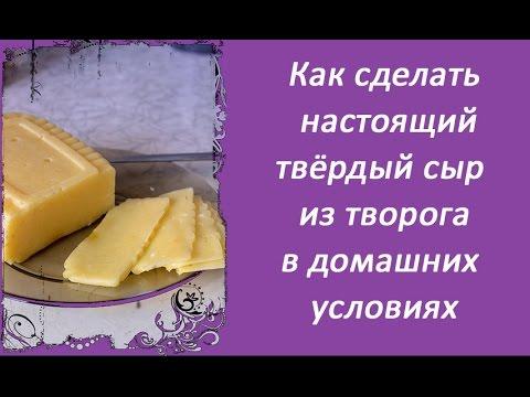 Рецепты домашнего твердого сыра в домашних условиях