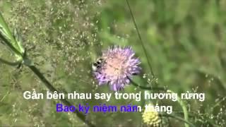 karaoke song lo chieu cuoi nam.mp4