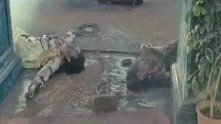 Arjun Rampal Gets Killed In A Bomb Blast - Raajneeti
