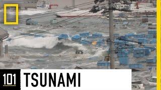 Tsunamis 101 | National Geographic