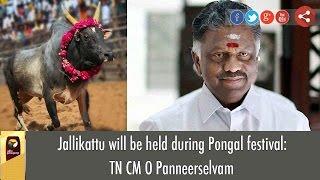 BREAKING: Jallikattu will be held During Pongal announces TN CM O Panneerselvam