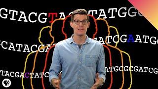CRISPR and the Future of Human Evolution
