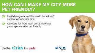 How Can Parks Help a City Be Pet Friendly?