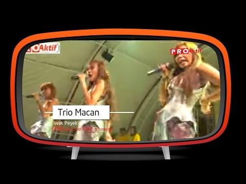 Trio Macan - Iwak Peyek (Official Karaoke Video) Mp3