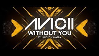 Avicii - Without You ft. Sandro Cavazza [Lyric Video]
