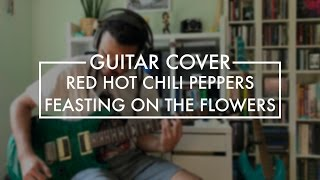 Red Hot Chili Peppers - Feasting on the Flowers (Guitar Cover)
