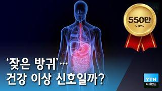 [YTN 사이언스] 잦은방귀, 건강 이상 신호일까? 방귀로 알아보는 건강 / YTN 사이언스