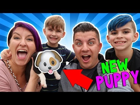 We Surprised The Kids With A New Puppy