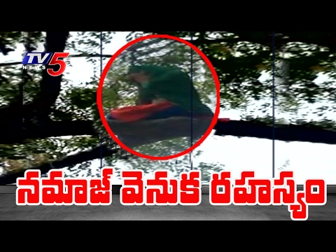 The Secret of Namaz On Neem Tree Revealed | TV5 News