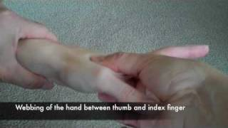 Headache Relief with Pressure Points