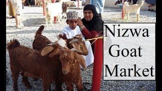Oman/Nizwa Goat Market 2 نزوى سوق الماعز  Part 25