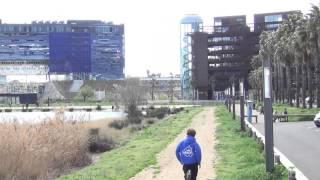 AMP - Runs ZAT Montpellier (Parkour)