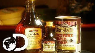 MAPLE SYRUP | How It