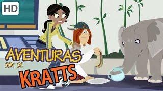 Aventuras com os Kratts - Exploração de animais selvagens