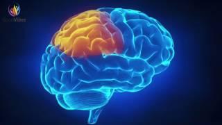Neuro Enhancer - Hyper Gamma Binaural Beats - Intelligence, Memory, IQ, Concentration Booster