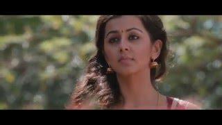 Malupu Movie SONGS    Aadi Pinisetty,Nikki Galrani