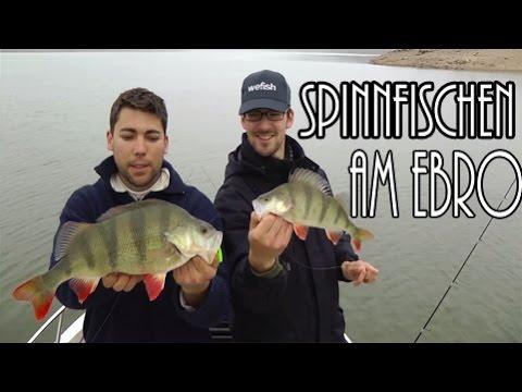 Spinnfischen am Ebro Stausee mit dem Joker von Quantum