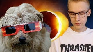 Pets and the Eclipse: What You Need to Know (2017 ECLIPSE)