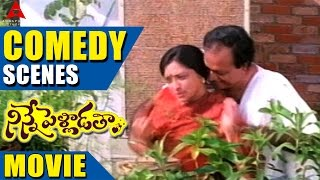Ninnepelladatha Movie Comedy Scenes Part - 1 - Ninne Pelladatha Movie - Nagarjuna,Tabu