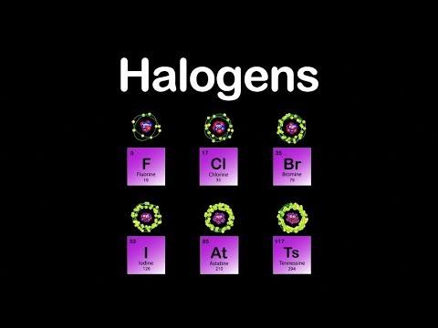 Xxx Mp4 Halogens Halogens Group Halogens Periodic Table 3gp Sex