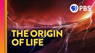 Where Did Life Come From? (feat. PBS Space Time And Eons!)