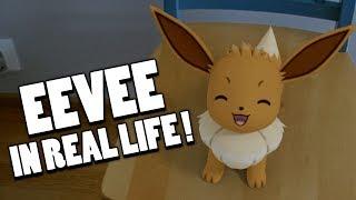 Eevee In Real Life!