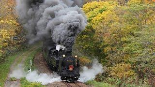 【総集編】 北海道のSL列車 C11 207号機&171号機 走行集 / JR北海道