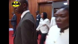 Unidentified Persons Invade Senate, Snatch Mace