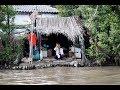 Download Video Download Ký sự miền Tây: Sông nước Cà Mau 3GP MP4 FLV
