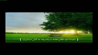 إلا تنصروه فقد نصره الله ~ روائع عبد الباسط