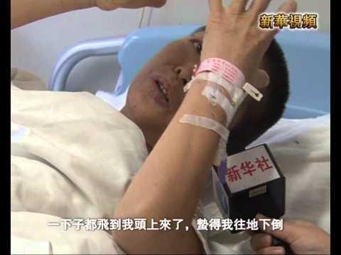 新華社》陝西胡蜂蜇人致42人亡