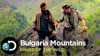 Venison Dinner in the Bulgarian Mountains | Kings of the Wild