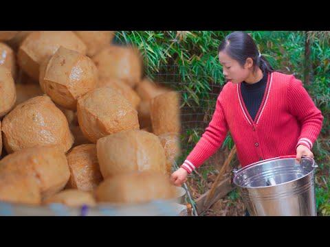 纯手工豆腐制� �,从大豆到豆腐在到餐桌,各种豆腐的做法 野小妹wild girl 美食