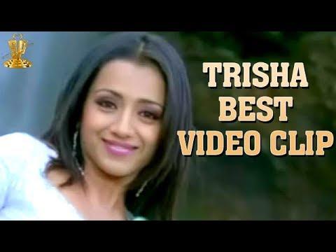 Trisha  hot video in Namo Venkateasa