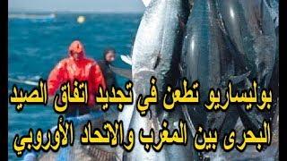 البوليساريو تطعن في تجديد اتفاق الصيد البحري بين المغرب والاتحاد الأوروبي